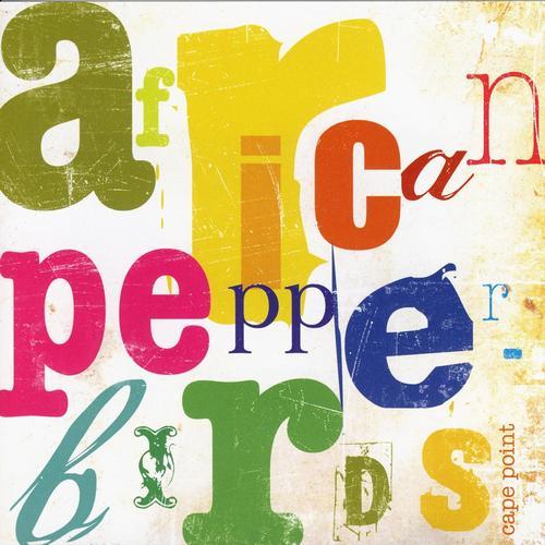 african pepperbirds