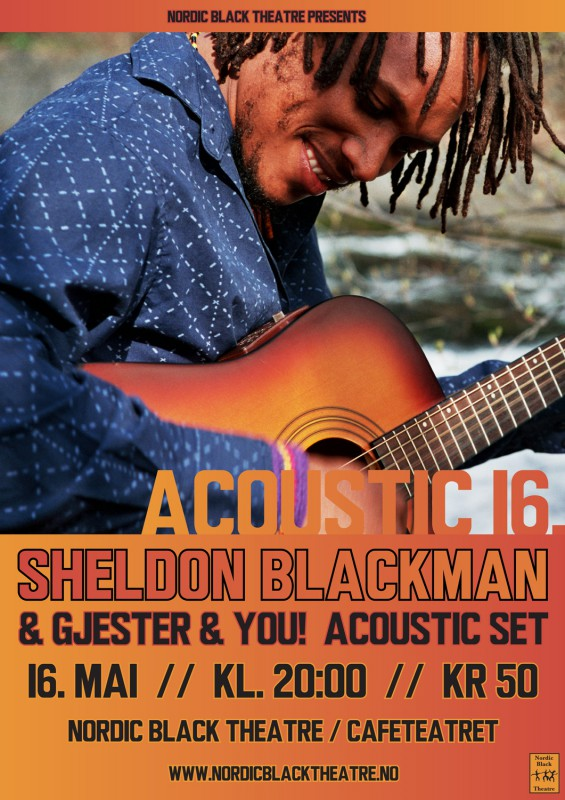 sheldon_acoustic16_2015b